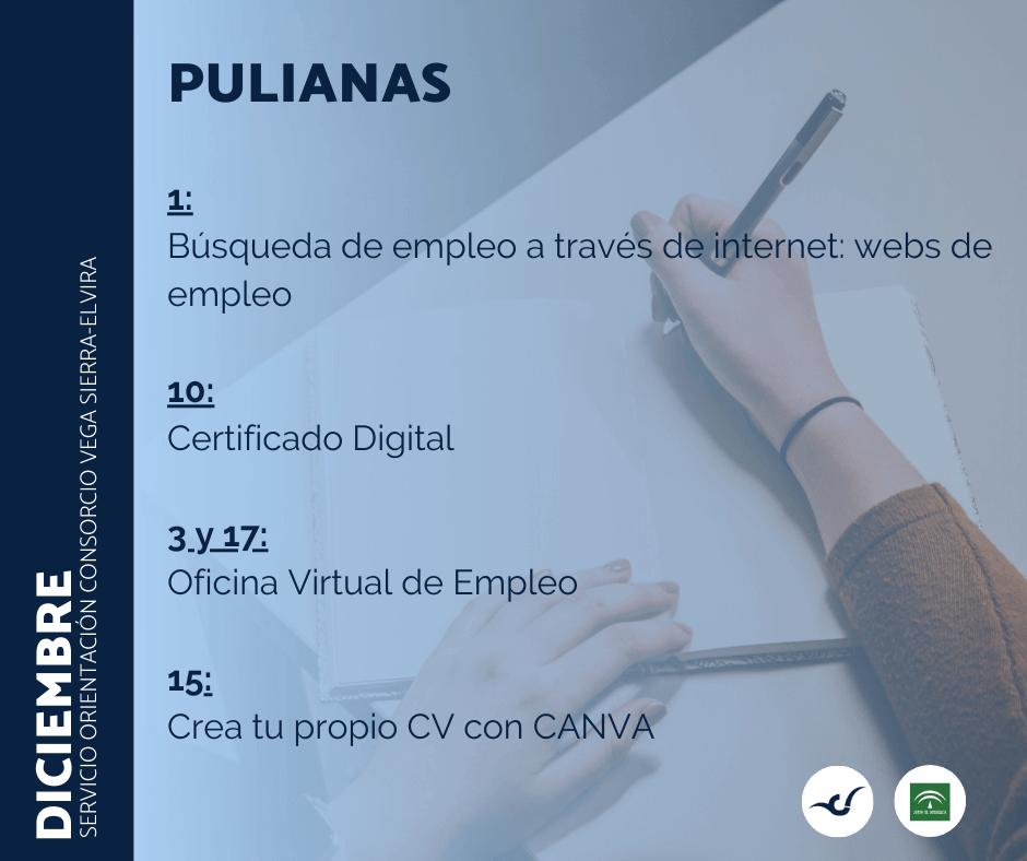 programación sala de orientación diciembre en Pulianas